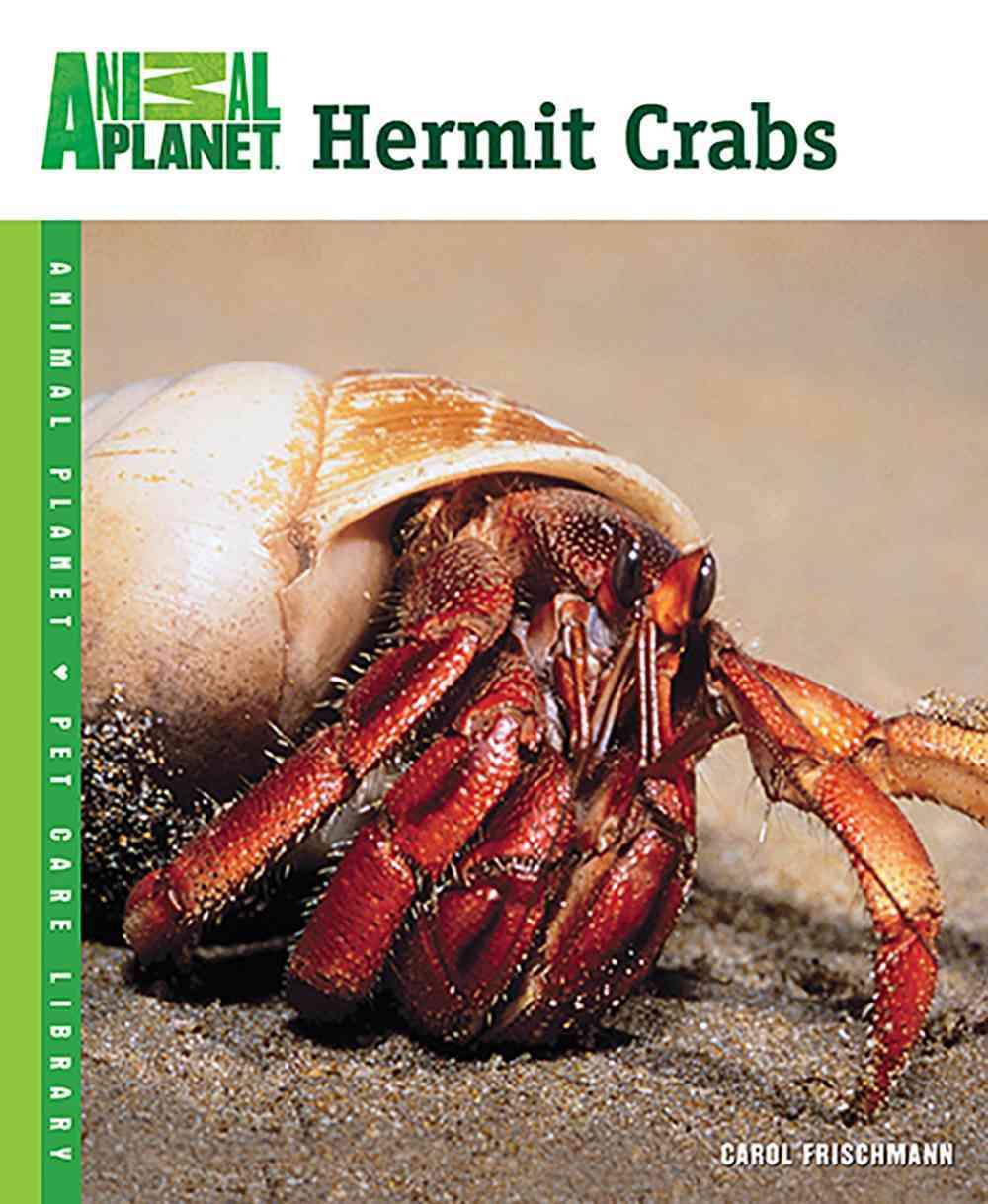 Hermit Crabs By Frischmann, Carol